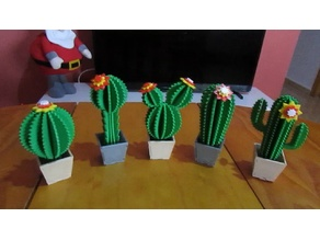 cactus printed 3d and cactus lasercut