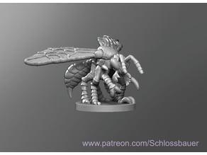 Predator Wasp