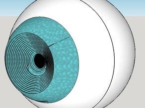 Eye Shaped Pinhole Camera ( read description)