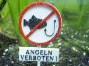 Aquarium Schild