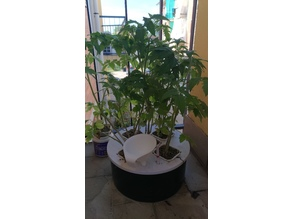 DIY Hydroponic System with can