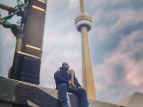 Tiny Views Drake