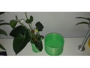Airy Clone Planter