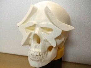 Hamamatsu skull