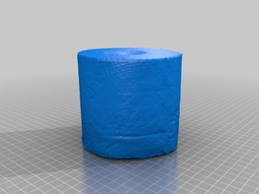Toilet paper roll scan