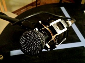 Microphone Shock Absorber Mount for Boom Stand