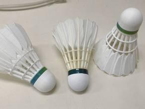 Badminton - Shuttlecock
