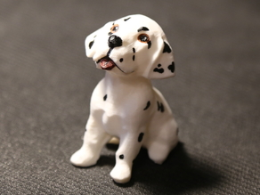 Puppy Dalmatian Dog