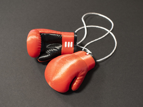 Multi-Color Boxing Gloves