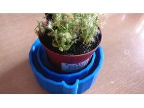 Plant Pod for Carnivorous Plant