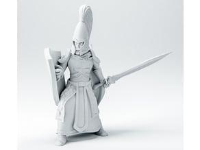 High elf remix (male version) - 28mm warrior knight