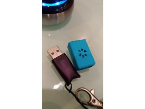 Hasp sentinel dongle shell