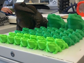 Bullfrog Scanned on MakerBot Digitizer