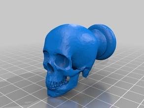 Skull drawer pull