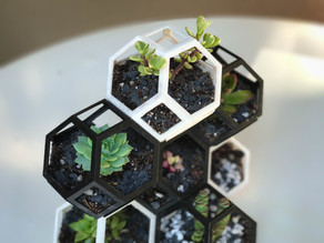 Plantygon - Modular Geometric Stacking Planter for Succulents