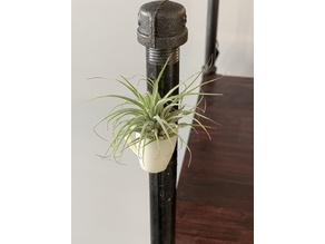 Coffee Mug Magnet / Air-plant Holder