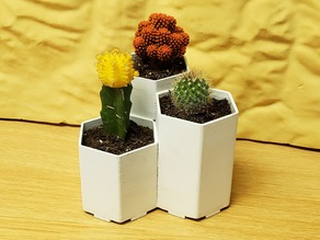 Simple Hexagon Planter