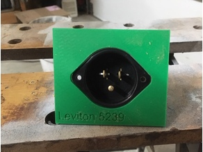 Leviton 5239 template woodworking