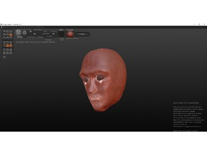 Head Sculptris
