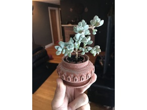 P15 - Vented and Drained Succulent Planter