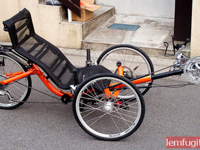 Recumbent Bicycle Stationary Support