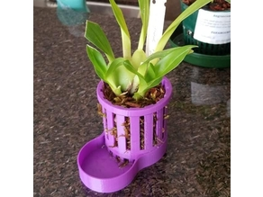 Self Watering Orchid Pot Iteration 1