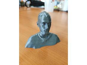 Human Head (3D scan) - Semik