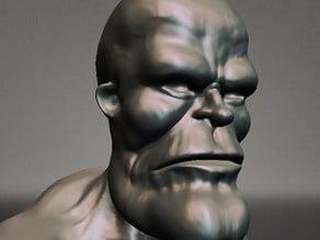 Brute head base
