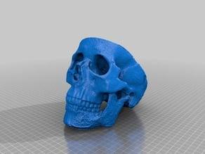 skull bottom