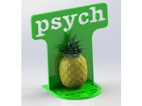 Bookend Psych TV show