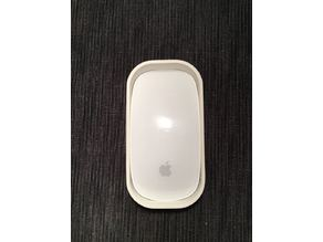 Apple Magic Mouse travel case