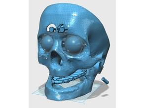 DAR Robot eyes - InMoov Advanced Eyes