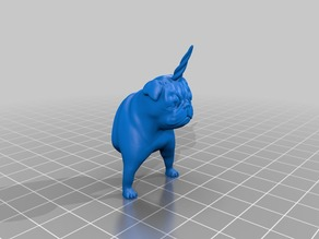 Pugicorn: Half pug, half unicorn