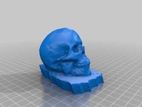 Human Skull (123D Catch)
