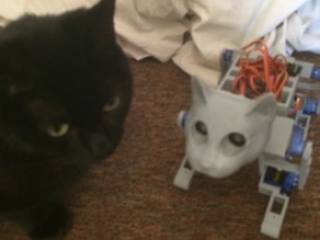 Cat head for Ez 3D Printed OpenCat by manic-3d-print