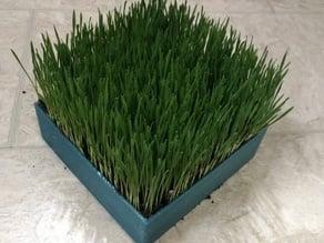 Cat Grass Planter