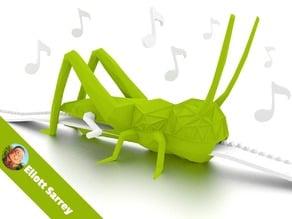 Singing Grasshopper