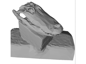 Low-poly Alligator skull