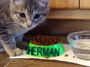 football kitty dish