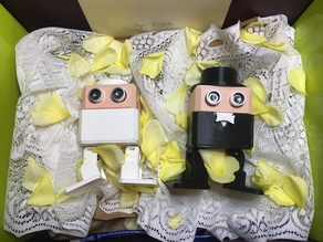 IngaDIY and OlliDIY two 3dprinted robots happylie married