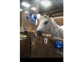 """horse stable name tag """"just add name """""""