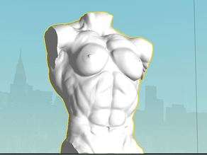 Female bodybuilder Torso 1