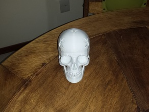 Human Skull with 5 shoots to keep pencil, pen or knife