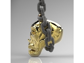 skull hanging on a chain
