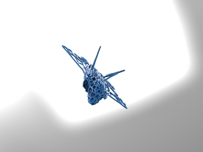 F-22 Raptor in style Voronoi