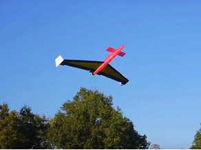 Canard RC Airplane, Pusher