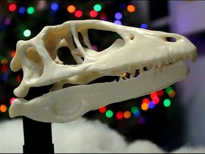 Animatronic Dinosaur Skull