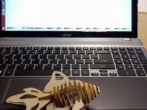 Laser cut version of the Goldfish - 3D Puzzle