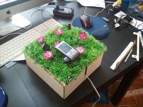 Charging Lawn