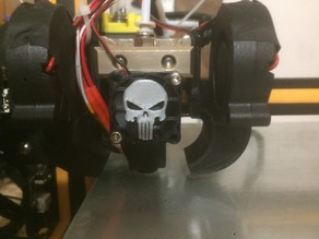 punisher 30mm fan guard